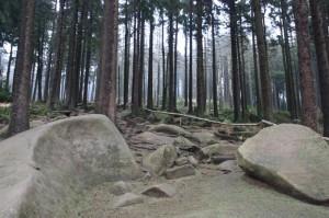 Aufstieg über Eckerloch